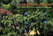 уютна градина