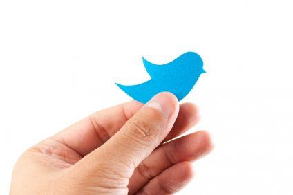 Hand holding a bluebird